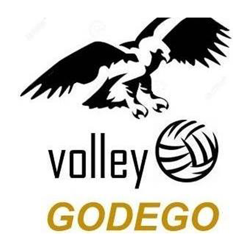 500 volley godego