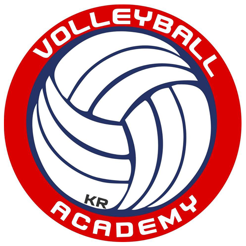 500 volleyball academy polonia