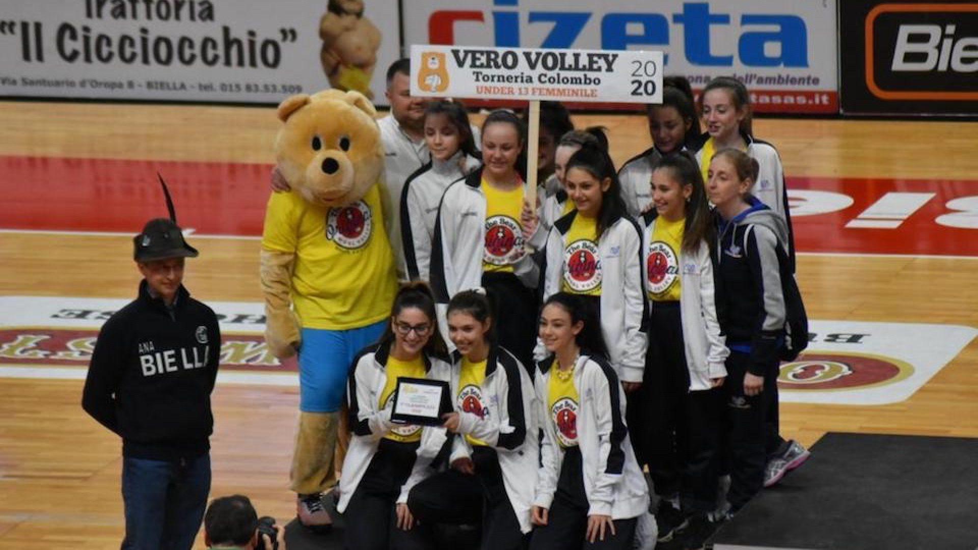 bear wool volley