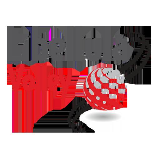 500 libellula volley