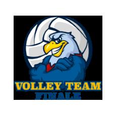 volley team finale logo